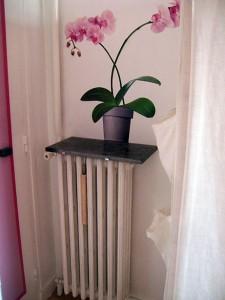 radiateur-et-deco
